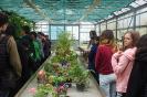 24. 5. 2019 | Deň fascinácie rastlinami